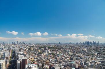 東京風景 ワイドで望む 新宿 池袋 スカイツリー 地平線 2019年10月