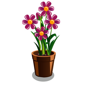 Pot with Plant and Purple Flowers - Cartoon Vector Image