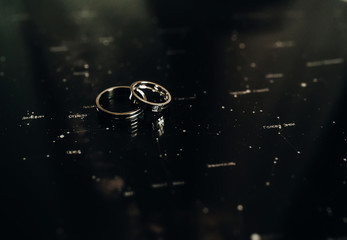 Black and white picture of wedding rings lying on Zodiac signs.