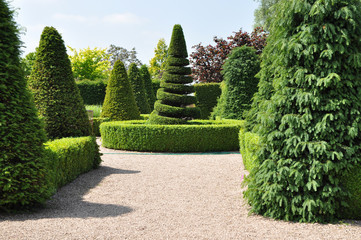 Topiary hedges and spiral tree in formal English garden