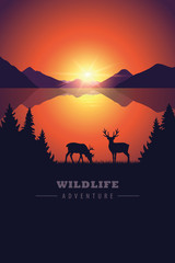 elk in the wilderness wildlife adventure by the lake at sunset vector illustration EPS10