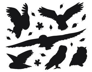 Foto op Aluminium Uilen cartoon Vector flat black set bundle of owls silhouette isolated on white background