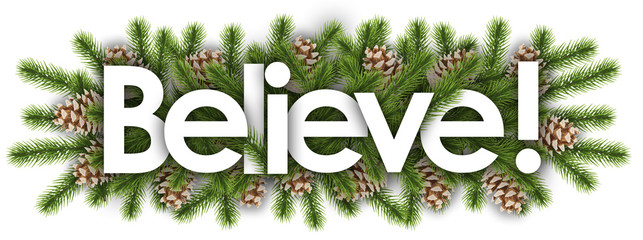 Believe in christmas background - pine branchs