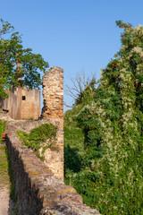 Ruine mit Mauerwerk im Grünen
