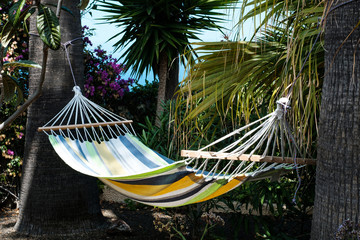 empty hammock in garden with palm trees