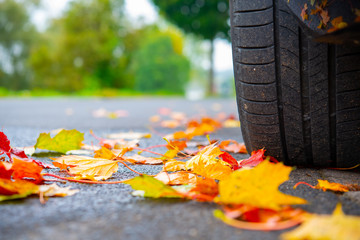autumn leaves with car wheel