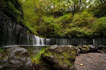 写真素材: 白糸の滝