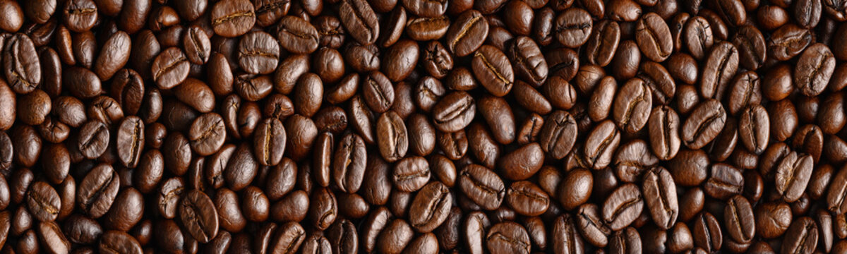 panoramic background of roasted arabica coffee beans for banner