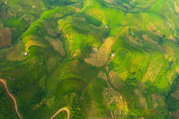 Aerial top view of paddy rice terraces, green agricultural fields in countryside or rural area of Mu Cang Chai, Yen Bai, mountain hills valley at sunset in Asia, Vietnam. Nature landscape background. Fototapete