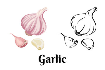 Garlic isolated on white background. Vector color illustration of sliced garlic, garlic clove, garlic bulb in cartoon flat style and black and white outline. Vegetable Icon. Wall mural