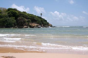 Traumstrand an der Westküste von Sri Lanka