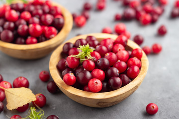 Fresh red cranberry in wooden bowl. Autumn harvest of wild berries.