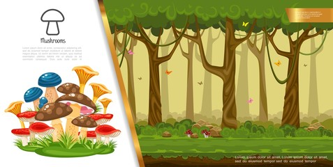 Flat Edible Mushrooms Colorful Concept