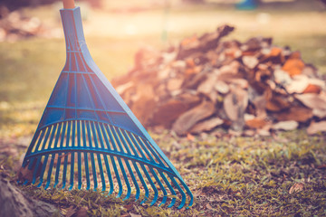Pile of fall leaves with fan rake on public park.