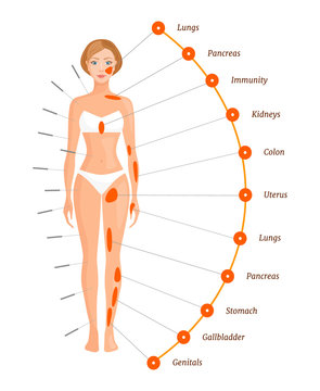 Acupuncture points on the human body. The projection of the internal organs. Vector illustration. Banner on the subject of alternative eastern medicine.