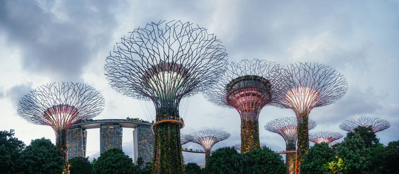 Panoramic view of The Supertrees at Gardens by the Bay and Marina Bay Sands at night, Singapore