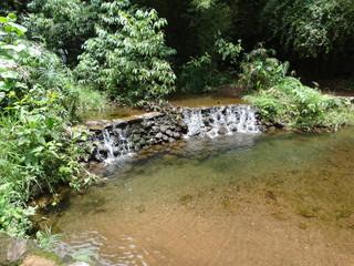 Papiers peints Rivière de la forêt waterfall with stones, vegetation and trees around in the park of mangabeiras - Belo Horizonte -MG- Brazil
