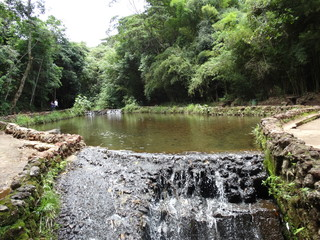 Photo sur Aluminium Rivière de la forêt waterfall with stones, vegetation and trees around in the park of mangabeiras - Belo Horizonte -MG- Brazil