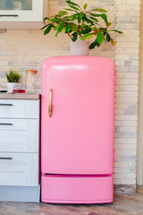 Retro style pink fridge in vintage kitchen