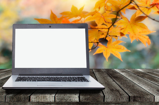 blank screen laptop computer on wooden top table or terrace with beautiful autumn colorful red and yellow maple leaves background, copy space for display presentation, marketing, advertisement concept
