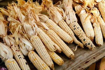 Dried Indian corn