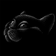 The Vector logo cat for tattoo or T-shirt design or outwear.  Cute print style cat background. This drawing would be nice to make on the black fabric or canvas.