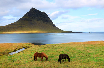 Wall Mural - Kirkjufell Mountain, Iceland, Europe