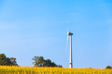 Tall Windmill at Field - Side View / View over corn field to single wind turbine tower at horizon (copy space)