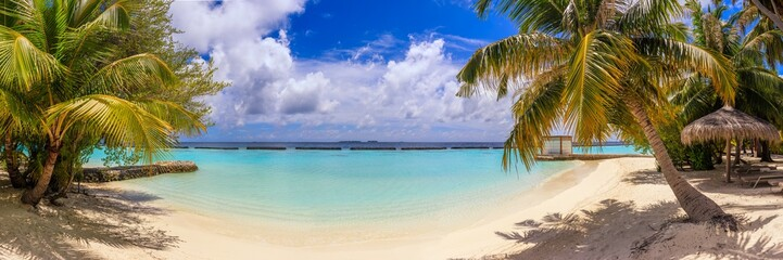 In de dag Palm boom Beach panorama at Maldives with blue sky, palm trees and turquoise water