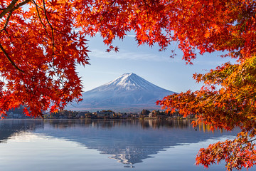Deurstickers Natuur Fuji Mountain in autumn with colorful maple leaves at Lake Kawaguchi, Yamanashi, Japan. Mount Fuji, Fujisan located on Honshu Island, is the highest mountain in Japan.