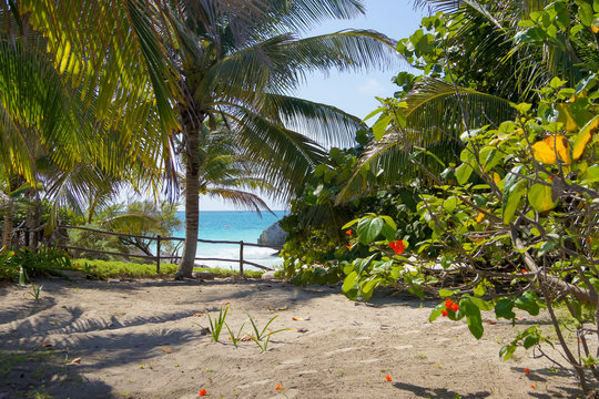 sea view from the shore with sand and palm trees in Xcaret Park in Mexico
