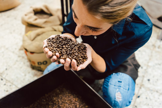Barista woman testing the aroma of fresh coffee beans