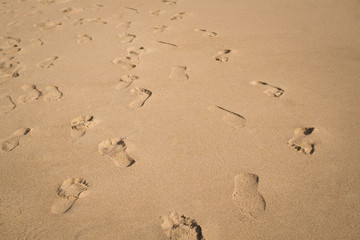 Footsteps on the sand beach background