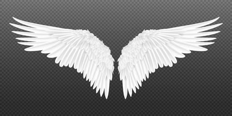 Realistic wings. Pair of white isolated angel style wings with 3D feathers on transparent background. Vector illustration bird wings design Wall mural