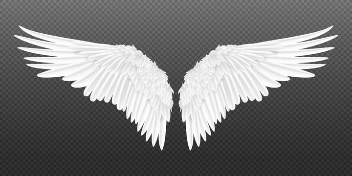 Realistic wings. Pair of white isolated angel style wings with 3D feathers on transparent background. Vector illustration bird wings design