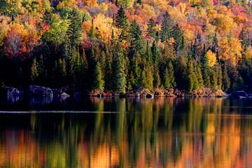 Laurentian Forest landscape in autumn, Quebec, Canda