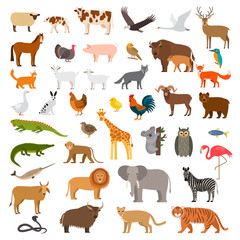 A large set of African, forest and animals and birds from the farm with the cubs. Bear, cow, elephant, lion. flat vector