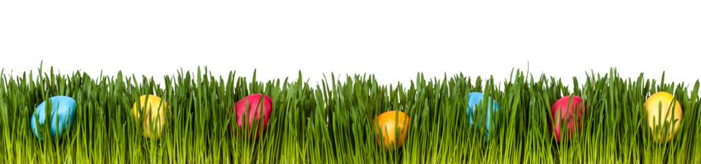 Versteckt Ostereier auf einer Wiese als Freisteller