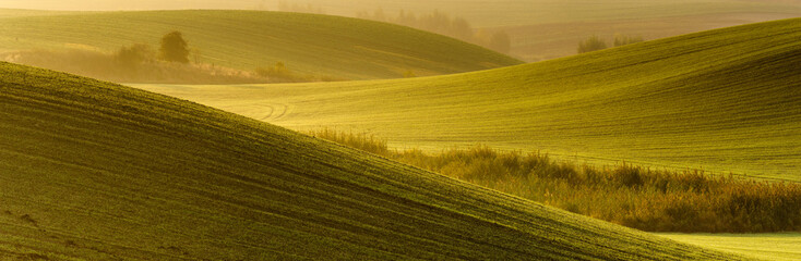 Autumn rural landscape with morning mist and beautiful wavy fields