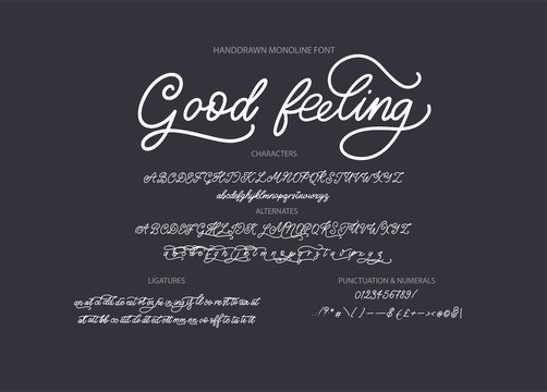 Hand drawn calligraphic vector monoline font. Distress signature letters. Modern script calligraphy type. ABC typography latin signature alphabet.