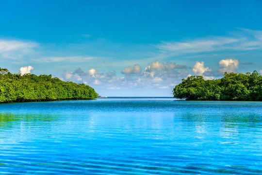 Venas Azules Colon Panama