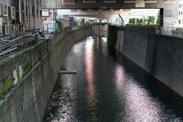 古川・渋谷川