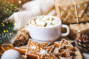 A Cup of hot cocoa and Christmas cookies. Merry Christmas and happy New year. Selective focus.