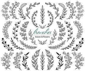 Big set of hand drawn vector plants and branches with leaves, flowers, berries. Floral sketch collection.