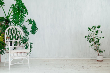 chair with green plants in a vintage white room Wall mural