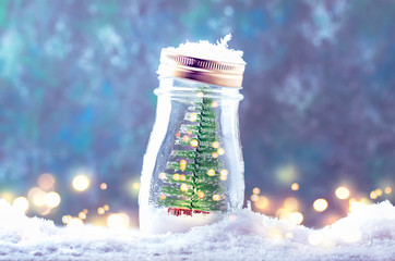 Small Christmas tree in a glass jar, New Year snowy background, Xmas concept