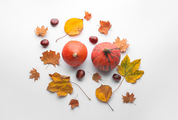 Wall Mural - Composition with autumn leaves and pumpkins on white background