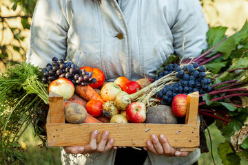 Farmer girl holds in her hands a wooden box with a crop of vegetables and fruits, organic vegetables. The concept of a garden, cottage, harvest. Papier Peint