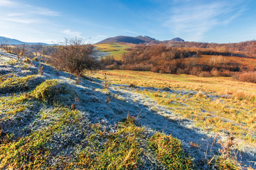 frosty morning in mountainous countryside. wonderful sunny weather. late autumn scenery with leafless trees on the hills. grassy meadow in hoarfrost