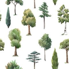 Watercolor vector tree seamless pattern forest oak fir birch, thuja linden baobab pine